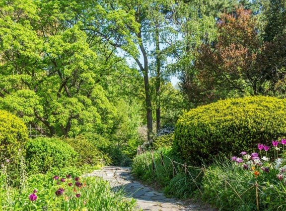 A lush path through Shakespeare Garden