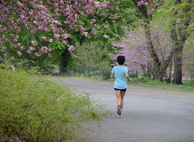 Jogging the Bridle Path