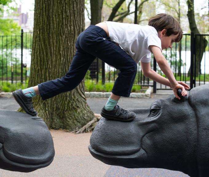 A boy climbs across two hippos