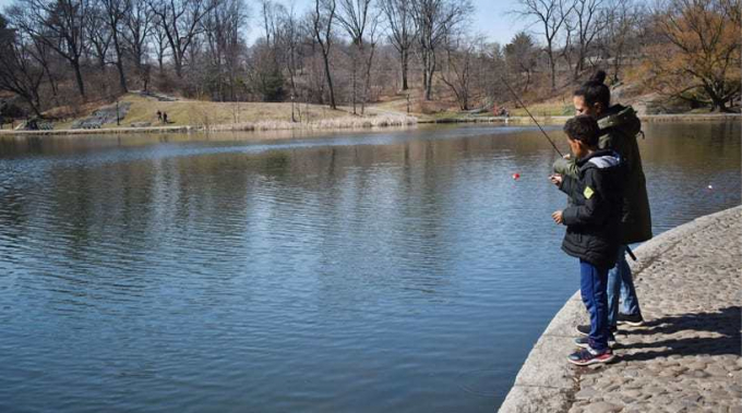 Catch-and-release fishing on the Harlem Meer