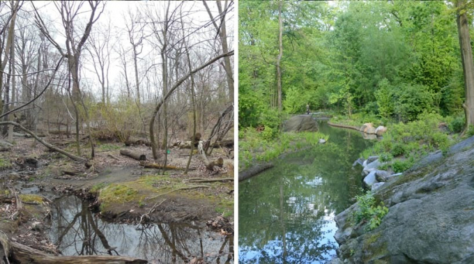The Ravine, Before and After