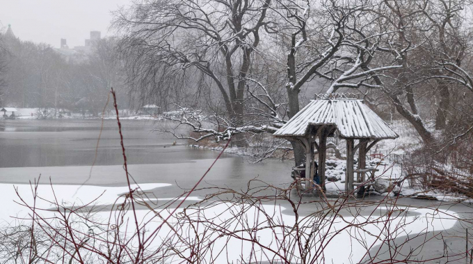Wagner Cover in Winter