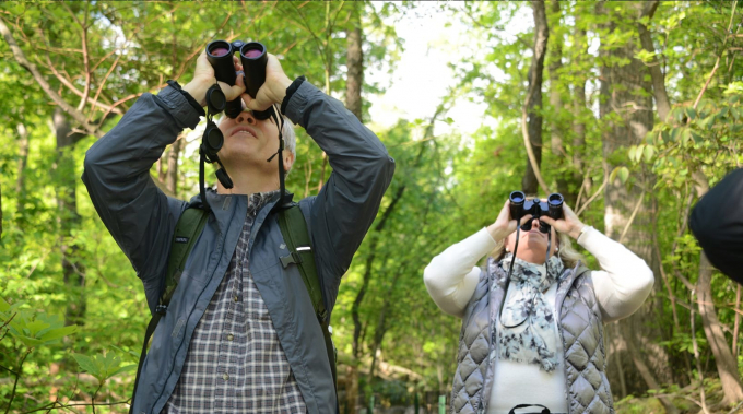 Birdwatchers with binoculars