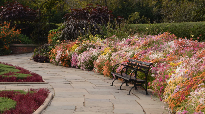 Foliage and Benches at Conservatory Garden