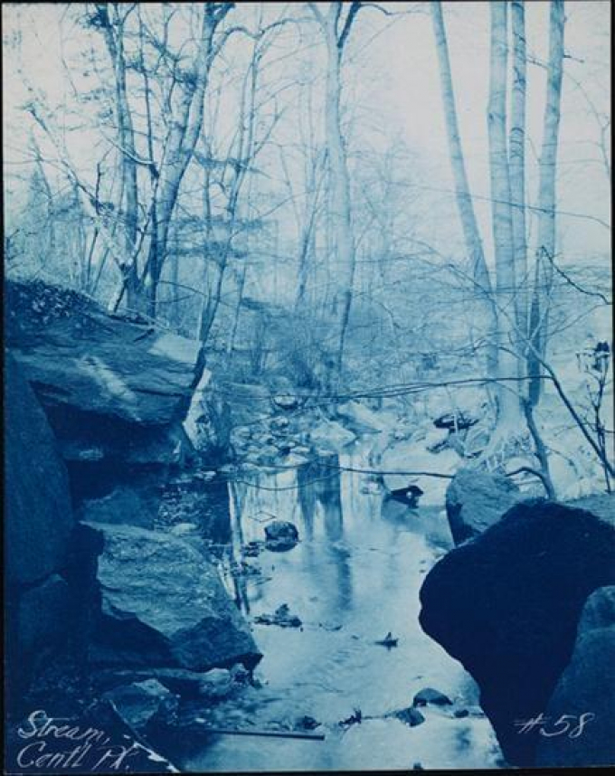 1890 photograph of a stream borderd by bare trees