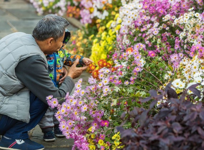A small child enjoys the blooms at Conservatory Garden