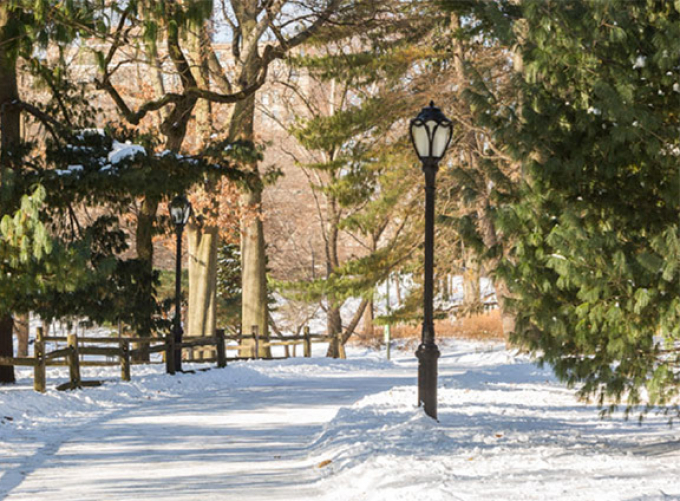 Typical Central Park Lamppost