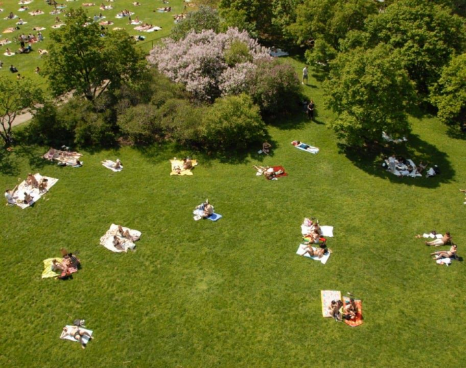 Aerial view of sunbathers on a Central Park lawn