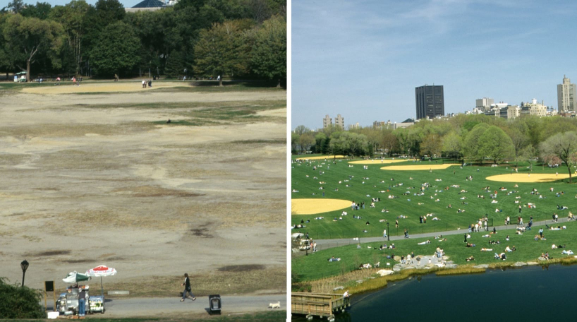 Great Lawn, Before and After