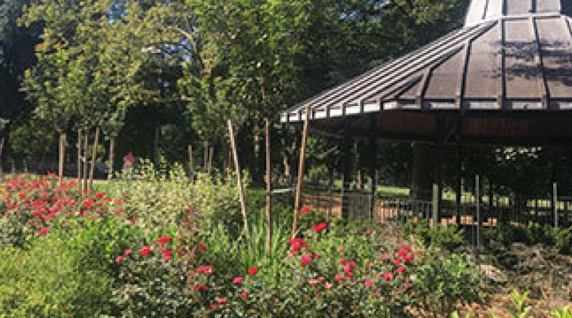 Community Parks Gardener Training