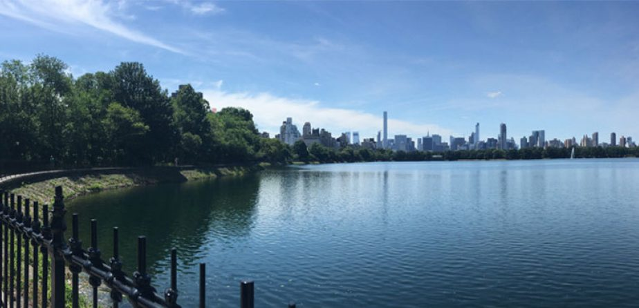 The Jackie Kennedy Onassis Reservoir