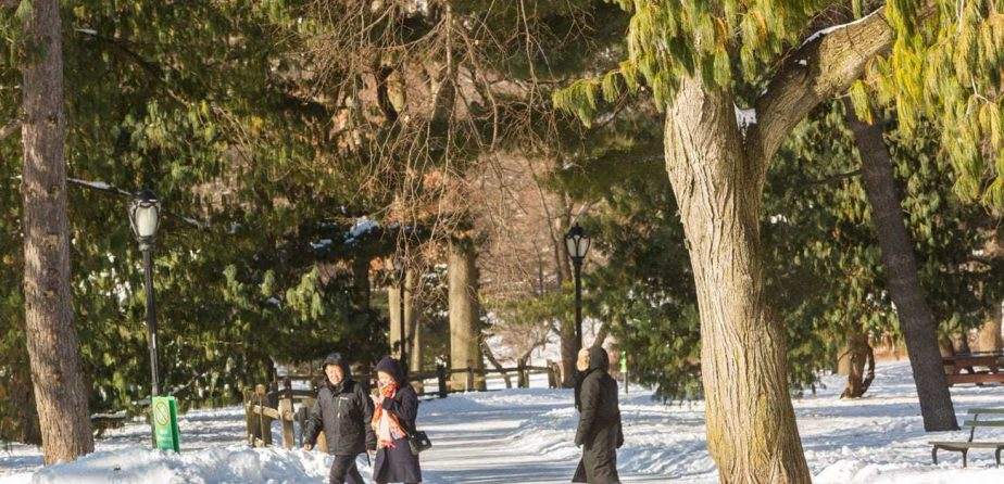How to Spend the Holiday Season in Central Park
