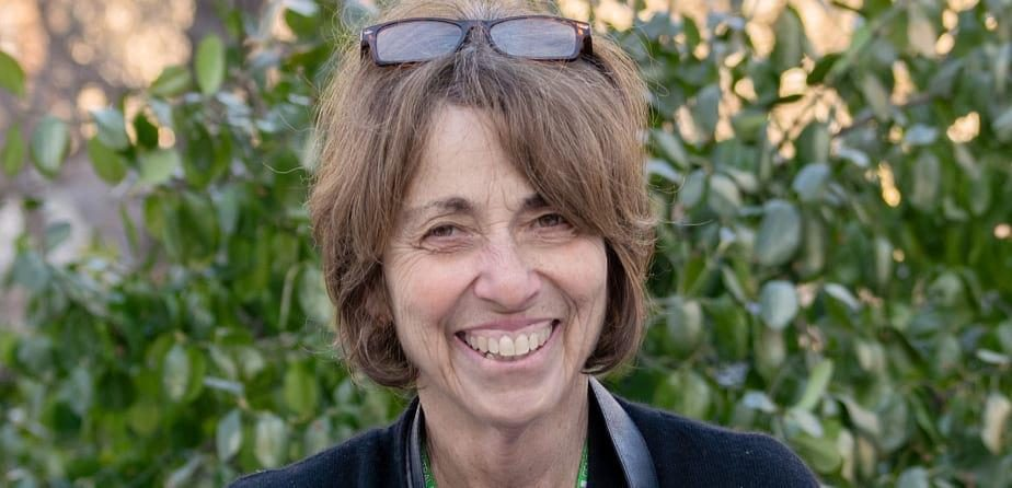Q&A with Sara Cedar Miller, Central Park Conservancy Historian Emerita