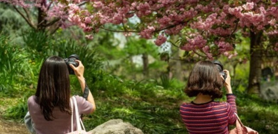 Two photographers capturing snapshots