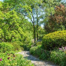 A lush path through Shakespeare Garden