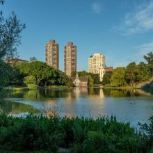 Harlem Meer in summer, with buildings in the background