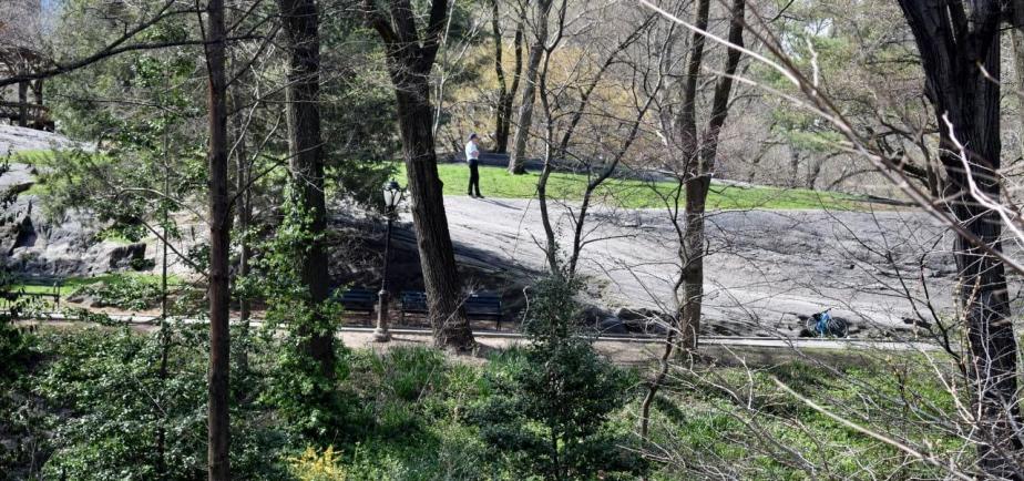A man strolls on an outcrop