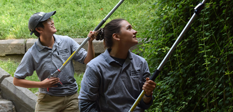 Meet the Summer Interns of the Conservancy