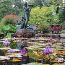 Burnett Fountain