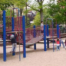 Spector Playground