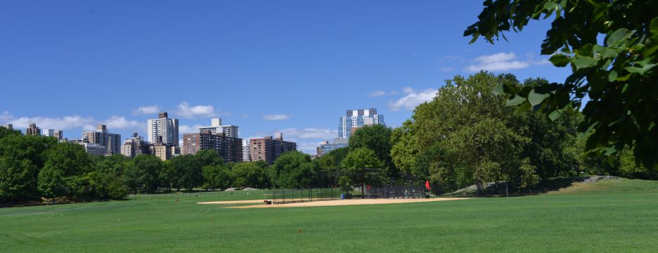 North Meadow