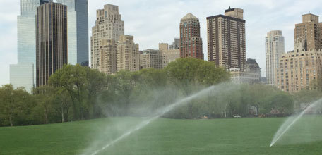 Talking Turf: Athletic Field Management in Central Park
