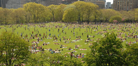 The Central Park Effect: Urban Parks as an Economic Development Strategy