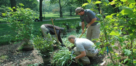 Zone Management: The Central Park Conservancy Approach to Park Operations