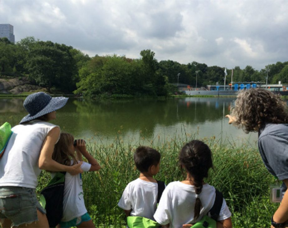 Discovery Families Harlem Meer