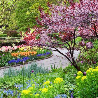 Conservatory Garden Spring Blooms
