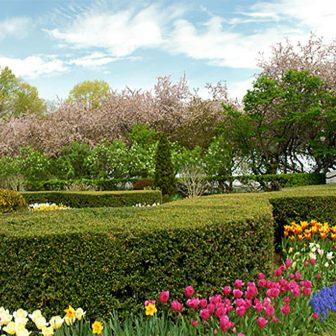 Conservatory Garden in full bloom