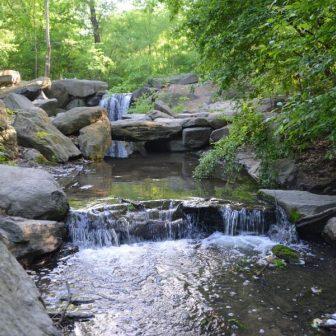 A stream waterfalls through lush greenery