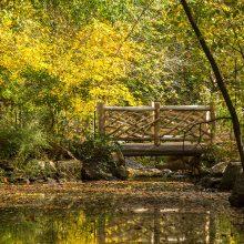 North Woods bridge