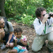 Birdwatchers at Hallett Nature Sanctuary