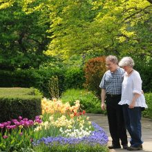 Conservatory Garden with Couple