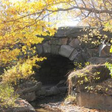 A North Woods arch in autumn