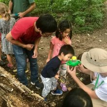A family closely examines a sample of nature