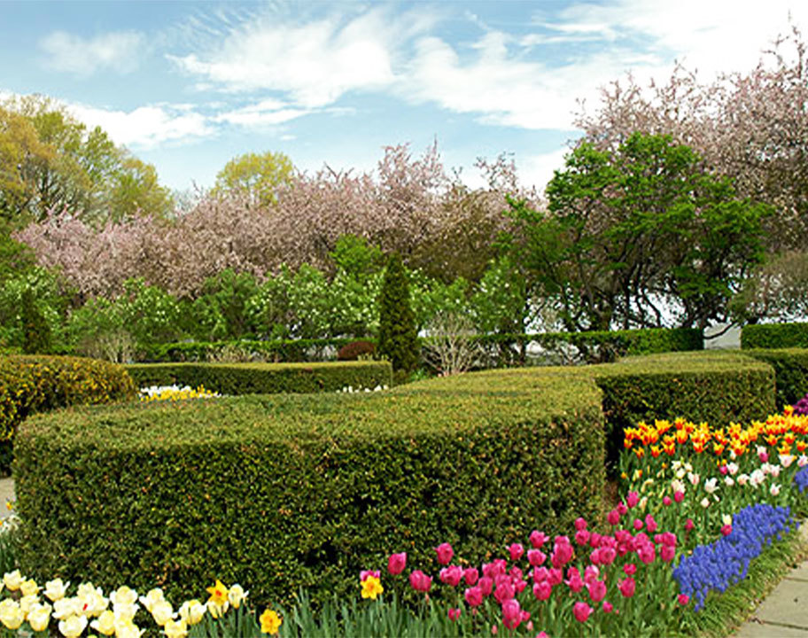 Conservatory Garden in full bloom